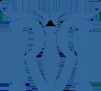 Ride To Rescue Logo